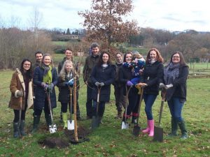 02-12-2016-rhs-tree-planting-with-taylors-sales-02-12-2016-11-26-059-2